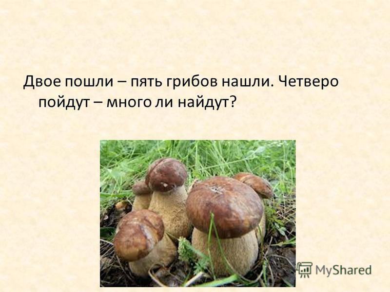 Двое пошли – пять грибов нашли. Четверо пойдут – много ли найдут?