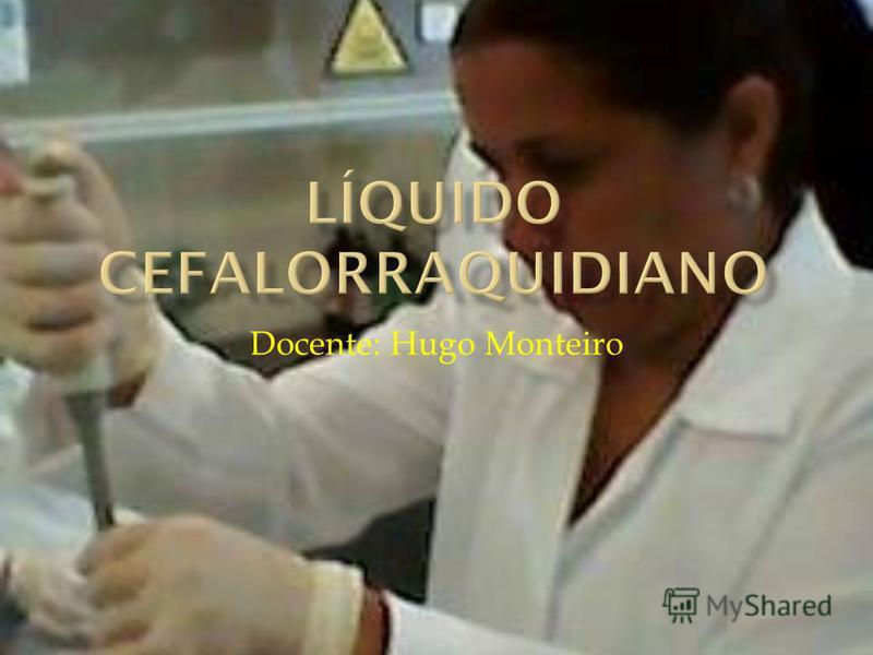 Docente: Hugo Monteiro