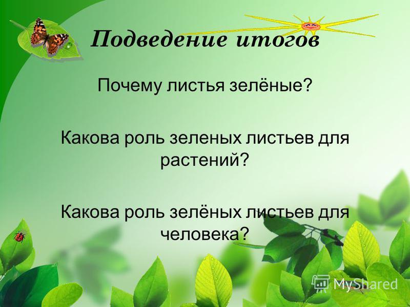 Подведение итогов Почему листья зелёные? Какова роль зеленых листьев для растений? Какова роль зелёных листьев для человека?