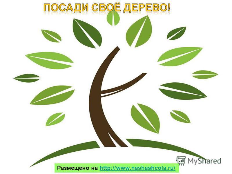 Человек должен быть мудрым и жить в добром содружестве с природой. Каждый может стать другом природе. Размещено на http://www.nashashcola.ru/http://www.nashashcola.ru/
