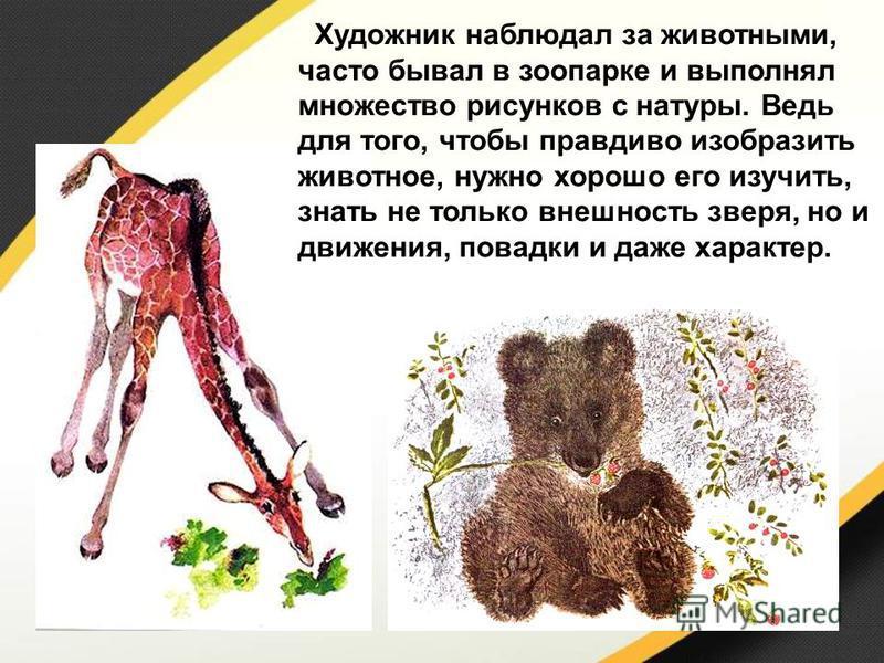 Художник наблюдал за животными, часто бывал в зоопарке и выполнял множество рисунков с натуры. Ведь для того, чтобы правдиво изобразить животное, нужно хорошо его изучить, знать не только внешность зверя, но и движения, повадки и даже характер.