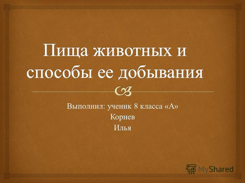 Выполнил : ученик 8 класса « А » Корнев Илья