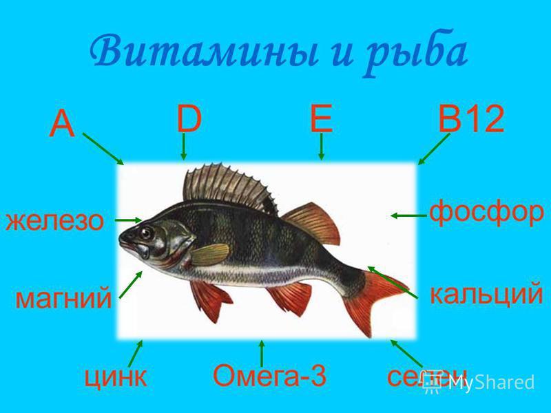 Витамины и рыба Омега-3 селен цинк магний кальций фосфор железо В12ED A