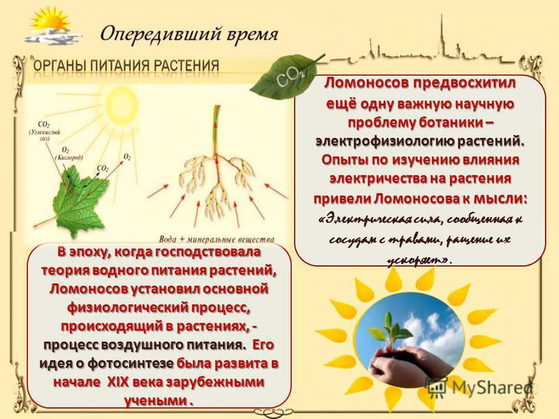 В эпоху, когда господствовала теория водного питания растений, Ломоносов установил основной физиологический процесс, происходящий в растениях, - процесс воздушного питания. Его идея о фотосинтезе была развита в начале XIX века зарубежными учеными. Ло