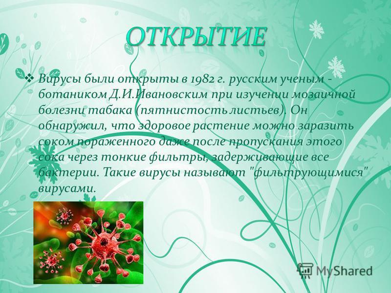Вирусы были открыты в 1982 г. русским ученым - ботаником Д.И.Ивановским при изучении мозаичной болезни табака (пятнистость листьев). Он обнаружил, что здоровое растение можно заразить соком пораженного даже после пропускания этого сока через тонкие ф