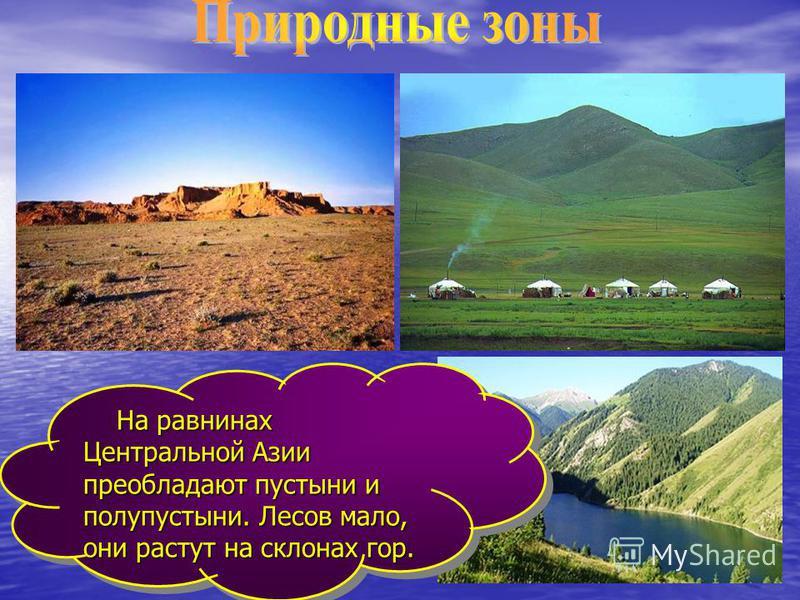 На равнинах Центральной Азии преобладают пустыни и полупустыни. Лесов мало, они растут на склонах гор. На равнинах Центральной Азии преобладают пустыни и полупустыни. Лесов мало, они растут на склонах гор.