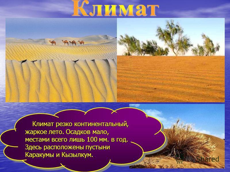 Климат резко континентальный, жаркое лето. Осадков мало, местами всего лишь 100 мм. в год. Здесь расположены пустыни Каракумы и Кызылкум. Климат резко континентальный, жаркое лето. Осадков мало, местами всего лишь 100 мм. в год. Здесь расположены пус