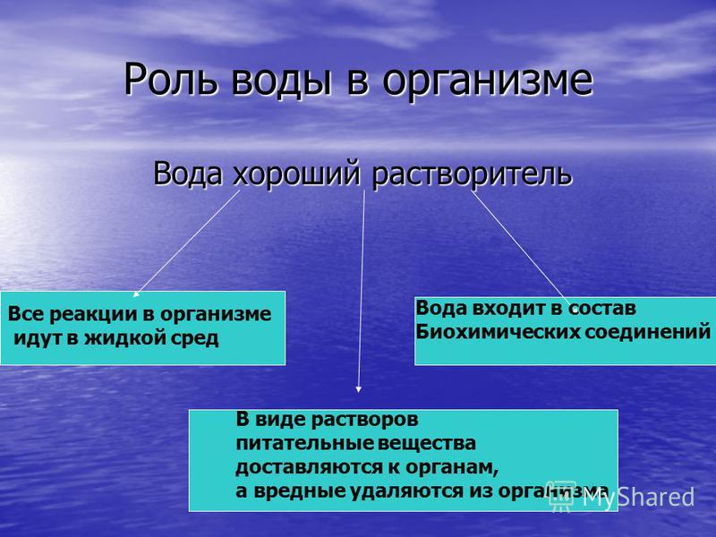 Роль воды в организме Вода хороший растворитель Вода хороший растворитель Все реакции в организме идут в жидкой сред В виде растворов питательные вещества доставляются к органам, а вредные удаляются из организма Вода входит в состав Биохимических сое