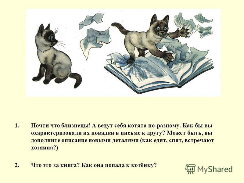 1. Почти что близнецы! А ведут себя котята по-разному. Как бы вы охарактеризовали их повадки в письме к другу? Может быть, вы дополните описание новыми деталями (как едят, спят, встречают хозяина?) 2. Что это за книга? Как она попала к котёнку?