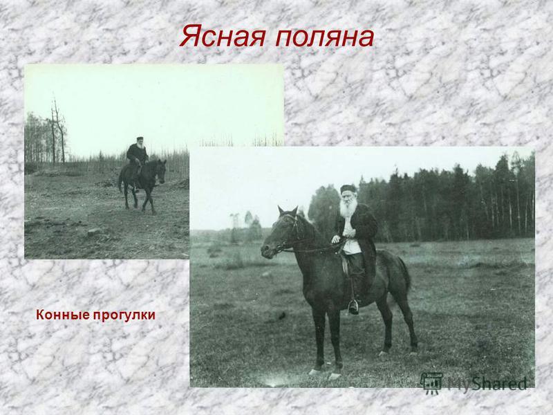 Ясная поляна Конные прогулки