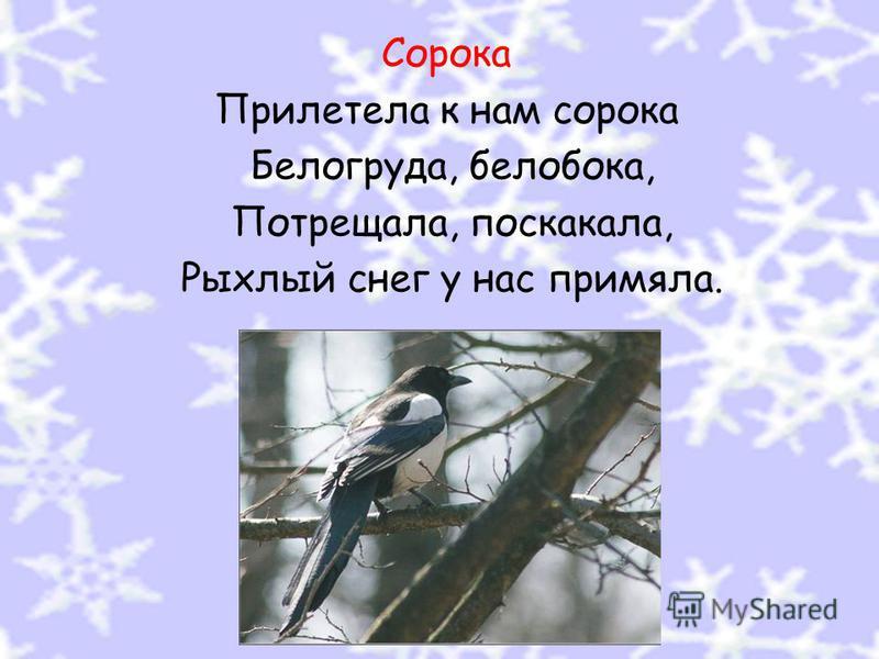 Сорока Прилетела к нам сорока Белогруда, белобока, Потрещала, поскакала, Рыхлый снег у нас примяла.