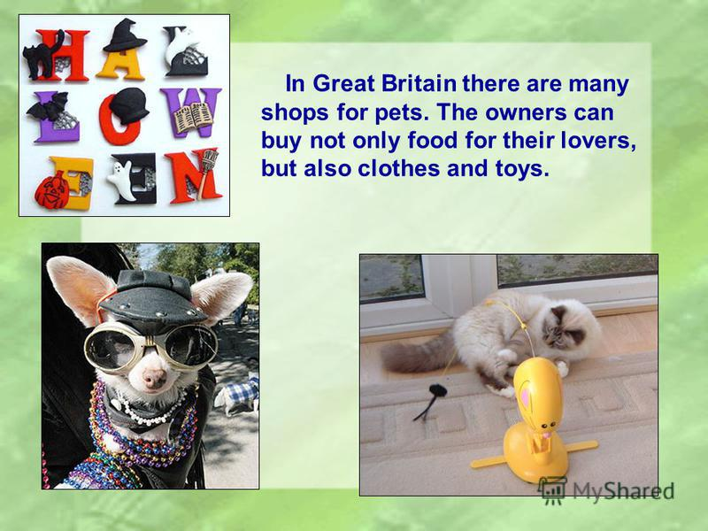 In Great Britain there are many shops for pets. The owners can buy not only food for their lovers, but also clothes and toys.