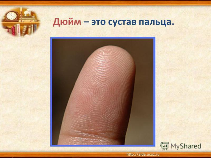 Дюйм – это сустав пальца.