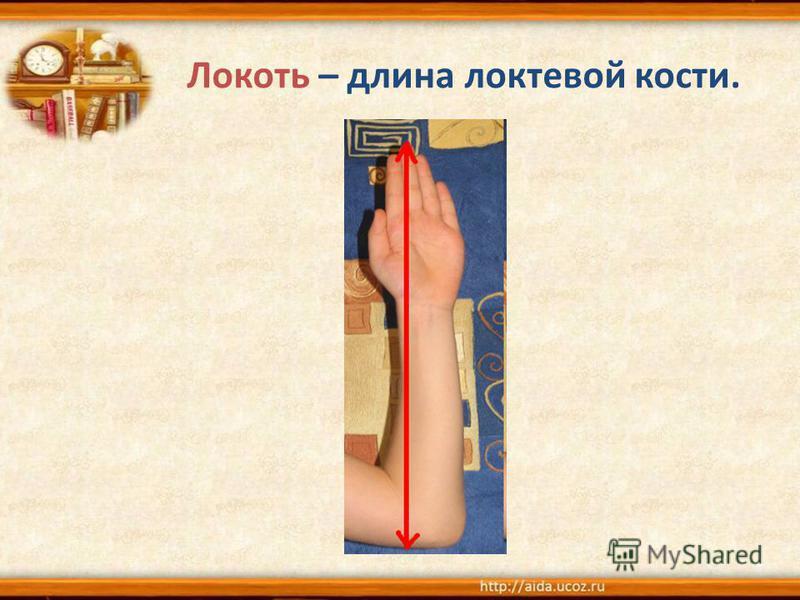 Локоть – длина локтевой кости.