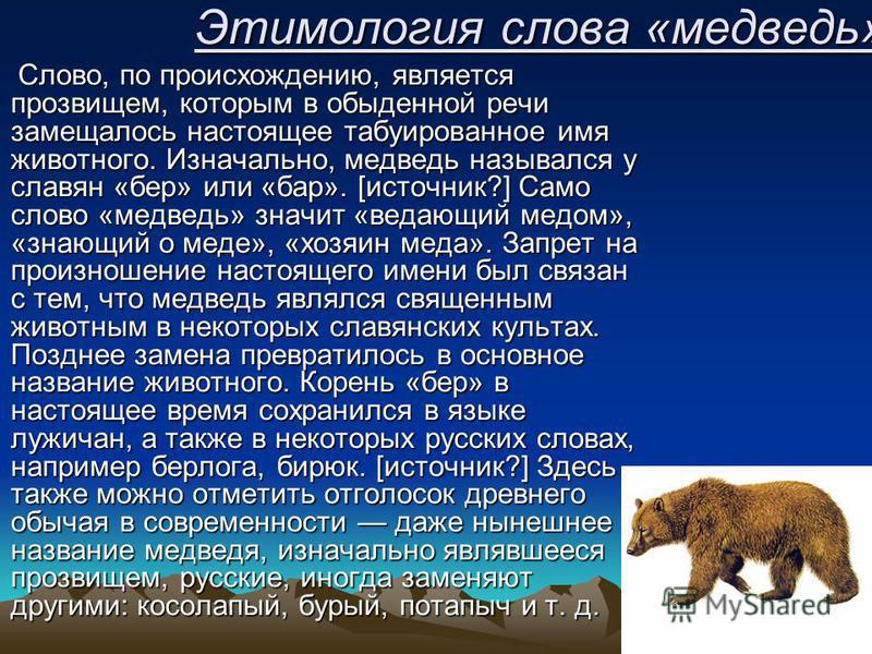 Этимология слова «медведь» Слово, по происхождению, является прозвищем, которым в обыденной речи замещалось настоящее табуированное имя животного. Изначально, медведь назывался у славян «бер» или «бар». [источник?] Само слово «медведь» значит «ведающ