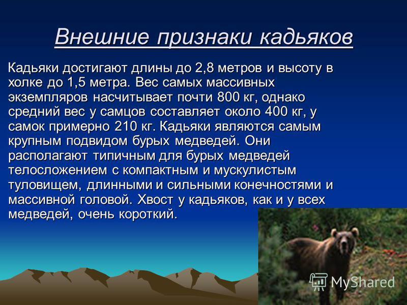 Внешние признаки кадьяков Кадьяки достигают длины до 2,8 метров и высоту в холке до 1,5 метра. Вес самых массивных экземпляров насчитывает почти 800 кг, однако средний вес у самцов составляет около 400 кг, у самок примерно 210 кг. Кадьяки являются са