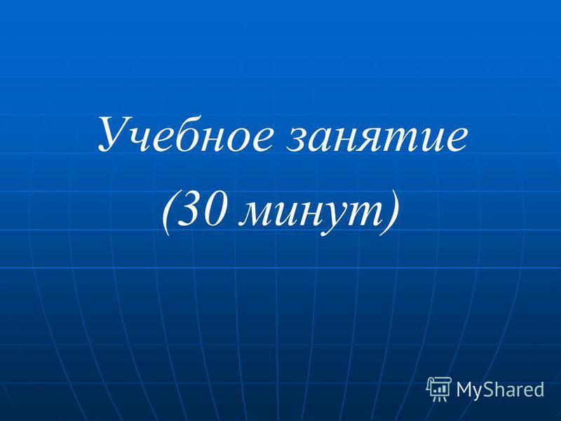 Учебное занятие (30 минут)