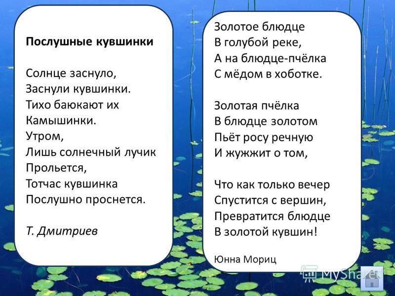 Послушные кувшинки Солнце заснуло, Заснули кувшинки. Тихо баюкают их Камышинки. Утром, Лишь солнечный лучик Прольется, Тотчас кувшинка Послушно проснется. Т. Дмитриев Золотое блюдце В голубой реке, А на блюдце-пчёлка С мёдом в хоботке. Золотая пчёлка