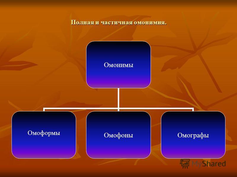 Полная и частичная омонимия. Омонимы Омоформы Омофоны Омографы