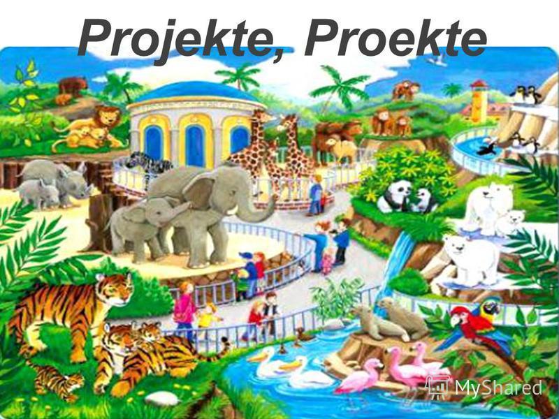 Projekte, Proekte