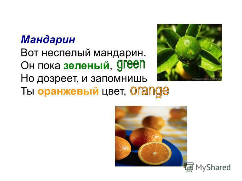 Мандарин Вот неспелый мандарин. Он пока зеленый, Но дозреет, и запомнишь Ты оранжевый цвет,