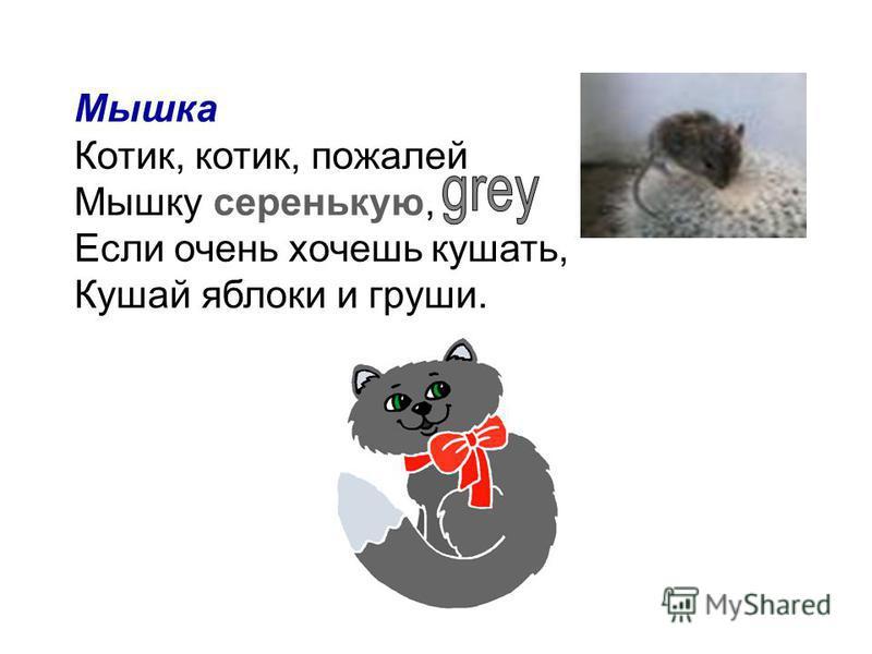 Мышка Котик, котик, пожалей Мышку серенькую, Если очень хочешь кушать, Кушай яблоки и груши.