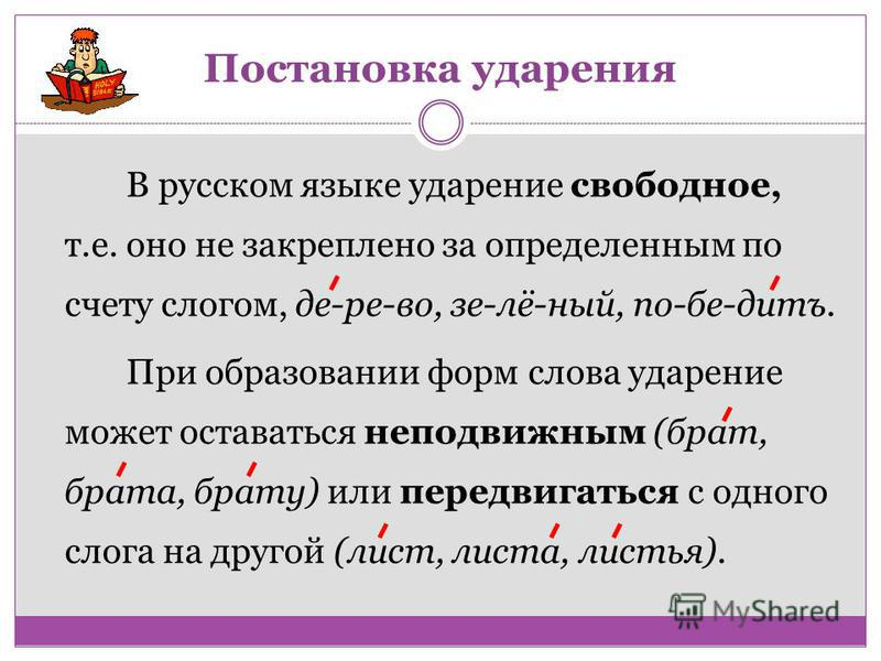 В русском языке ударение свободное, т.е. оно не закреплено за определенным по счету слогом, де-ре-во, се-лё-ный, по-бе-дитъ. При образовании форм слова ударение может оставаться неподвижным (брат, брата, брату) или передвигаться с одного слога на дру