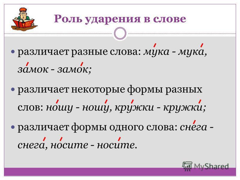 Роль ударения в слове различает разные слова: мука - мука, замок - замок; различает некоторые формы разных слов: ношу - ношу, кружки - кружки; различает формы одного слова: снега - снега, носите - носите.