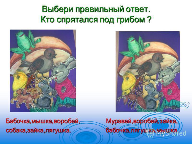 Выбери правильный ответ. Кто спрятался под грибом ? Бабочка,мышка,воробей, Муравей,воробей,зайка, собака,зайка,лягушка. бабочка,лягушка,мышка.