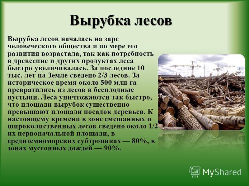Вырубка лесов Вырубка лесов Вырубка лесов началась на заре человеческого общества и по мере его развития возрастала, так как потребность в древесине и других продуктах леса быстро увеличивалась. За последние 10 тыс. лет на Земле сведено 2/3 лесов. За