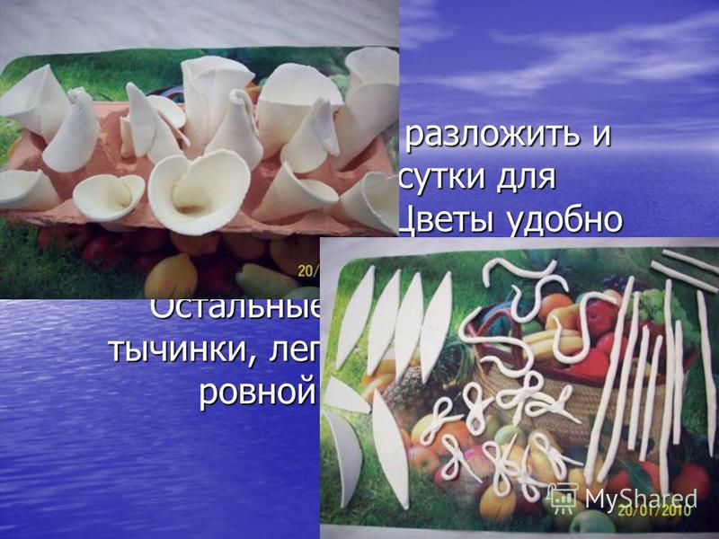 Готовые фигурки разложить и оставить на сутки для затвердевания. Цветы удобно разложить в ячейки из-под яиц. Остальные детали (шейки, тычинки, лепестки, бантики) на ровной поверхности.