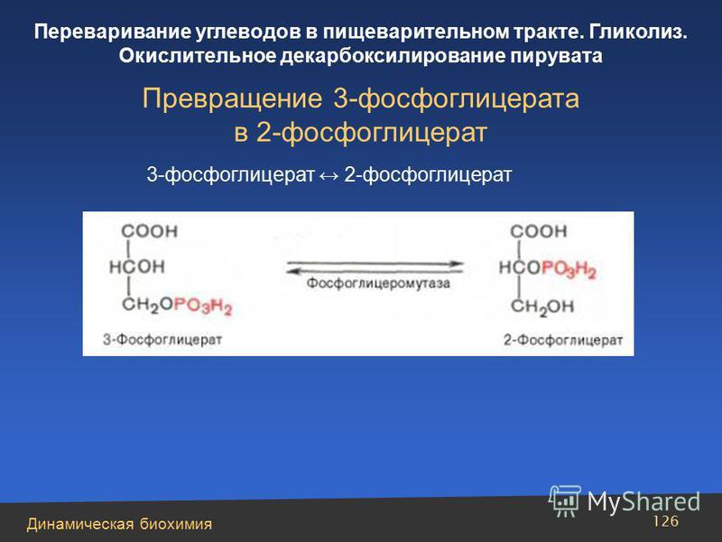 Динамическая биохимия Переваривание углеводов в пищеварительном тракте. Гликолиз. Окислительное декарбоксилирование пирувата 126 Превращение 3-фосфоглицерата в 2-фосфоглицерат 3-фосфоглицерат 2-фосфоглицерат