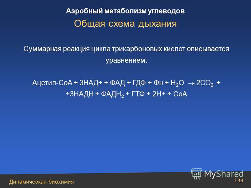 Динамическая биохимия Аэробный метаболизм углеводов 134 Суммарная реакция цикла трикарбоновых кислот описывается уравнением: Ацетил-СоА + 3НАД+ + ФАД + ГДФ + Фн + Н 2 О 2СО 2 + +3НАДН + ФАДН 2 + ГТФ + 2Н+ + СоА Общая схема дыхания