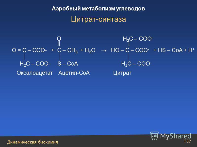 Динамическая биохимия Аэробный метаболизм углеводов 137 О = С – СОО- + С – СН 3 + Н 2 О НО – С – СОО - + HS – CoA + H + O H 2 C – COO - || | H 2 C – COO- S – CoA H 2 C – COO - Оксалоацетат Ацетил-СоА Цитрат Цитрат-синтаза