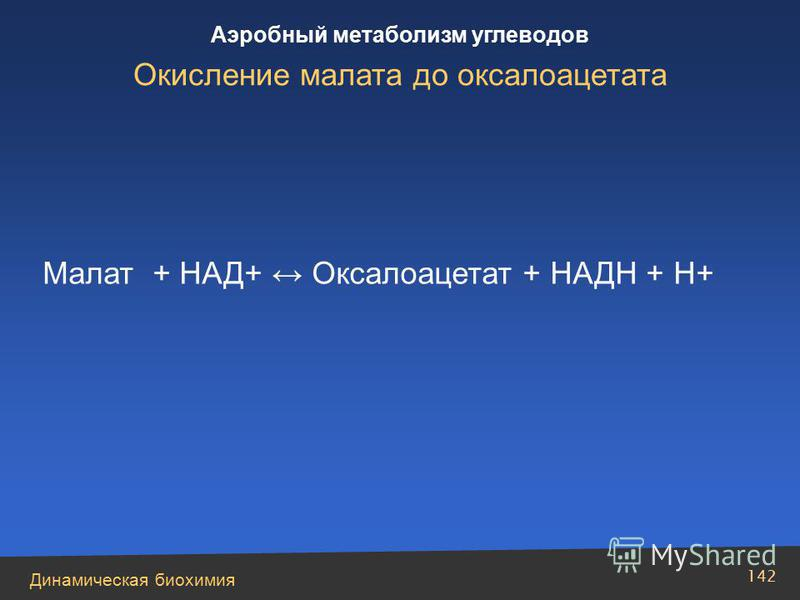 Динамическая биохимия Аэробный метаболизм углеводов 142 Малат + НАД+ Оксалоацетат + НАДН + Н+ Окисление малата до оксалоацетата
