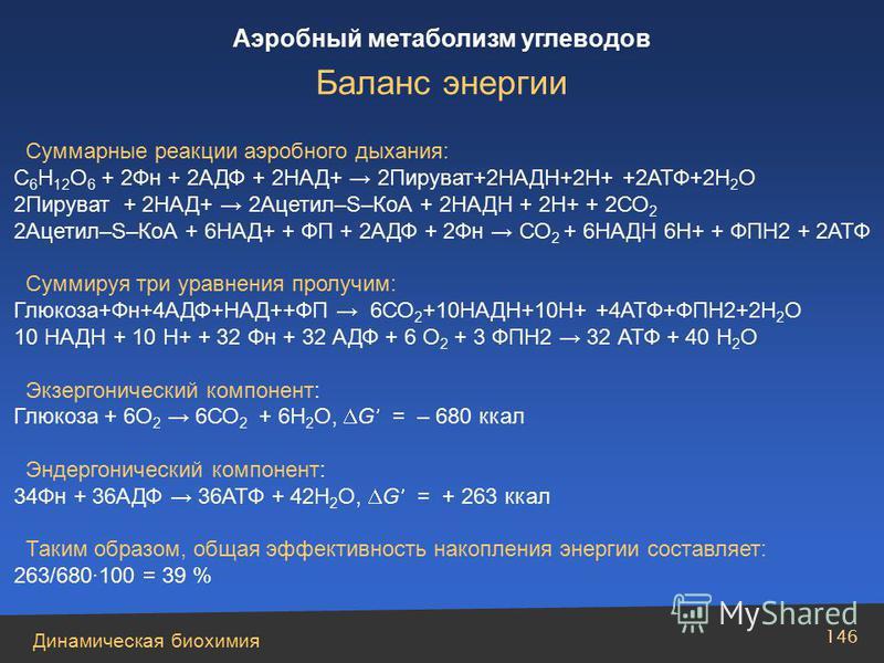 Динамическая биохимия Аэробный метаболизм углеводов 146 Суммарные реакции аэробного дыхания: С 6 Н 12 О 6 + 2Фн + 2АДФ + 2НАД+ 2Пируват+2НАДН+2Н+ +2АТФ+2Н 2 О 2Пируват + 2НАД+ 2Ацетил–S–КоА + 2НАДН + 2Н+ + 2СО 2 2Ацетил–S–КоА + 6НАД+ + ФП + 2АДФ + 2Ф