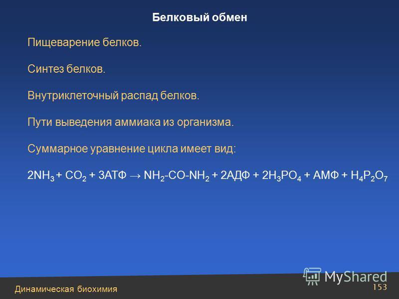 Динамическая биохимия 153 Пищеварение белков. Синтез белков. Внутриклеточный распад белков. Пути выведения аммиака из организма. Суммарное уравнение цикла имеет вид: 2NH 3 + CO 2 + 3ATФ NH 2 -CО-NH 2 + 2AДФ + 2H 3 PO 4 + АМФ + H 4 P 2 O 7 Белковый об