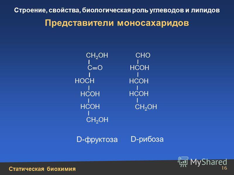 Статическая биохимия Строение, свойства, биологическая роль углеводов и липидов 16 Представители моносахаридов НСОН НОСН С О СН 2 ОН СНО D-фруктоза D-рибоза