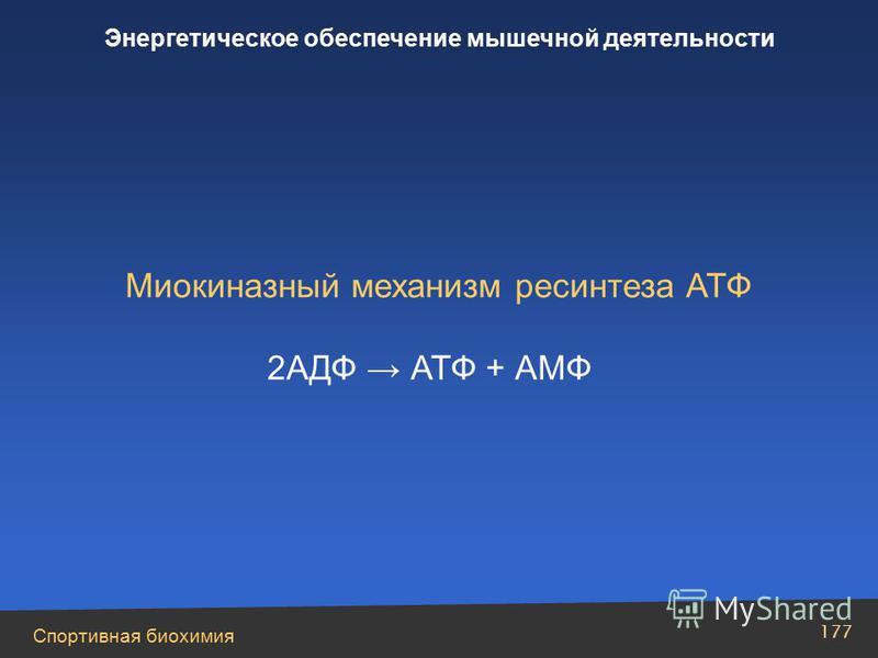 Спортивная биохимия 177 Энергетическое обеспечение мышечной деятельности Миокиназный механизм ресинтеза АТФ 2AДФ АТФ + АМФ