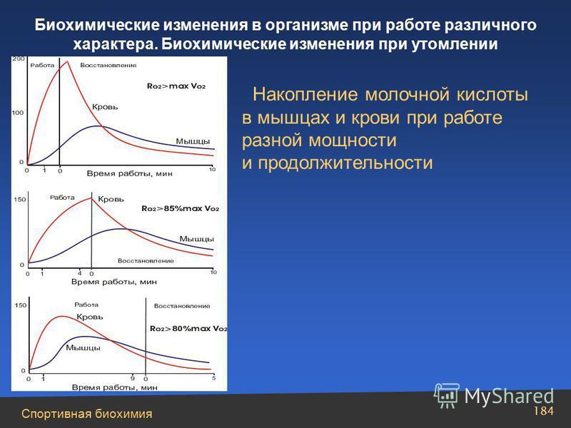 Спортивная биохимия 184 Биохимические изменения в организме при работе различного характера. Биохимические изменения при утомлении Накопление молочной кислоты в мышцах и крови при работе разной мощности и продолжительности