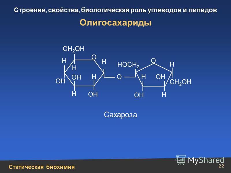 Статическая биохимия Строение, свойства, биологическая роль углеводов и липидов 22 Олигосахариды СН 2 ОН НОСН 2 Н Н Н Н Н Н Н О Н ОН О О Сахароза