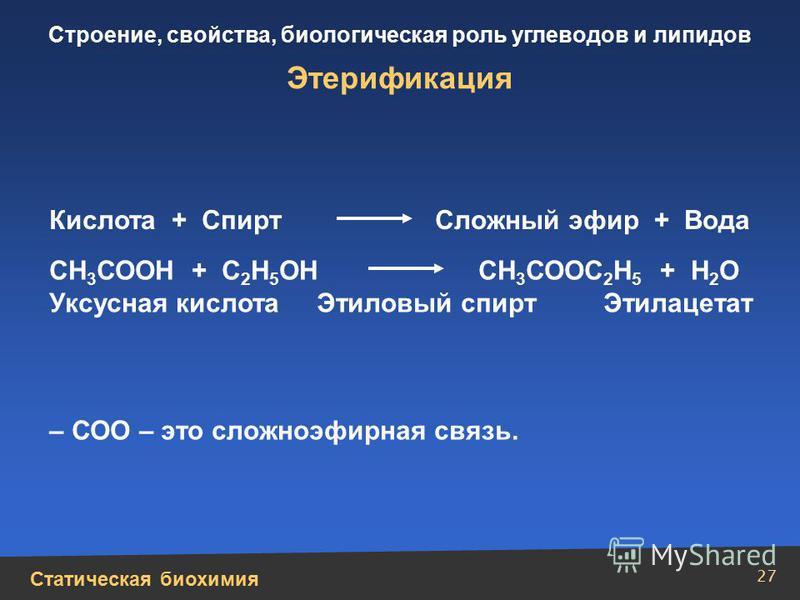 Статическая биохимия Строение, свойства, биологическая роль углеводов и липидов 27 СН 3 СООН + С 2 Н 5 ОН СН 3 СООС 2 Н 5 + Н 2 О Уксусная кислота Этиловый спирт Этилацетат – СОО – это сложноэфирная связь. Этерификация Кислота + Спирт Сложный эфир +