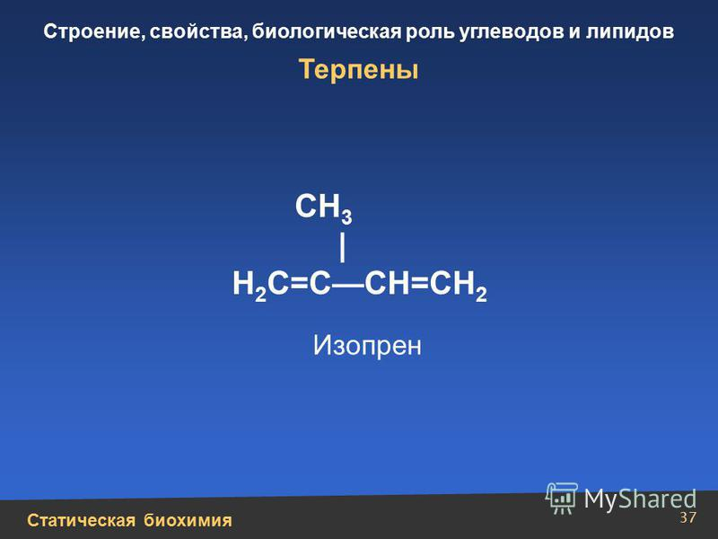 Статическая биохимия Строение, свойства, биологическая роль углеводов и липидов 37 Терпены CH 3 | Н 2 С=ССН=СН 2 Изопрен