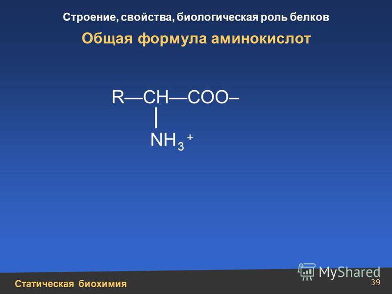 Статическая биохимия Строение, свойства, биологическая роль белков 39 Общая формула аминокислот RCHCOO– NH 3 +