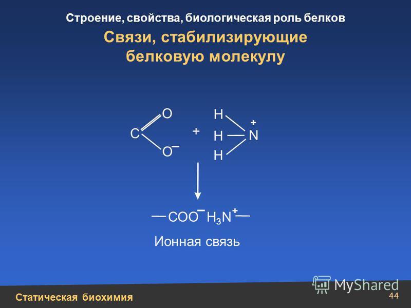 Статическая биохимия Строение, свойства, биологическая роль белков 44 Связи, стабилизирующие белковую молекулу Н Н N Н + + О О С СОО Н 3 N – – + Ионная связь