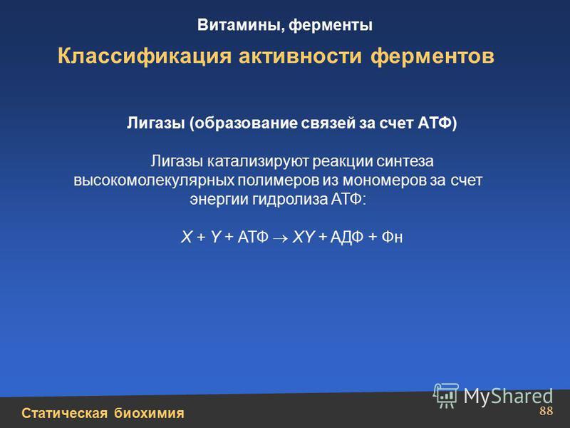 Статическая биохимия Витамины, ферменты 88 Классификация активности ферментов Лигазы (образование связей за счет АТФ) Лигазы катализируют реакции синтеза высокомолекулярных полимеров из мономеров за счет энергии гидролиза АТФ: X + Y + АТФ XY + AДФ +