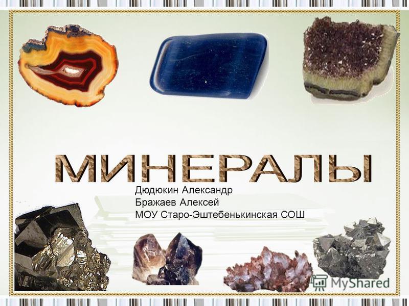 Дюдюкин Александр Бражаев Алексей МОУ Старо-Эштебенькинская СОШ