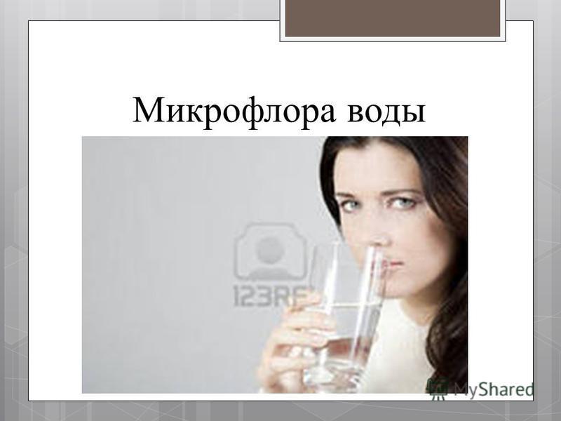 Микрофлора воды