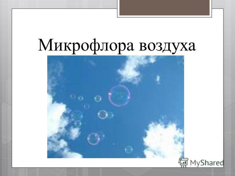Микрофлора воздуха