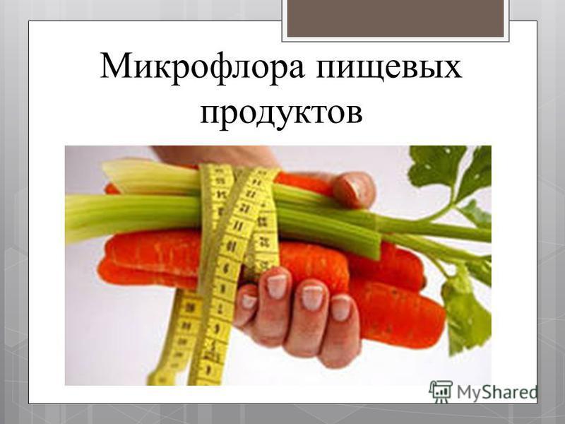 Микрофлора пищевых продуктов